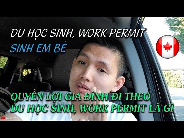 🇨🇦Du học sinh Canada, Work Permit sinh em bé. Quyền lợi của DHS và Work Permit | Quang Lê TV #134