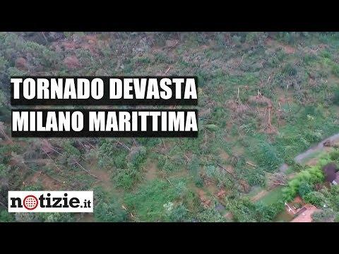 milano-marittima,-tromba-d'aria-sradica-gli-alberi-|-notizie.it