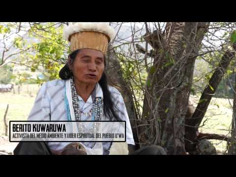 Voices of Amerikua I Berito Kuwaruwa (Cobaría), Pueblo U'Wa - Colombia