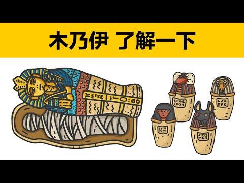 木乃伊的製作方法 古埃及人的生死觀 動畫科普 木乃伊是怎麼製作的 木乃伊的製作過程 木乃伊製作要多長時間 古埃及法老木乃伊 木乃伊四個罐子是什麼 