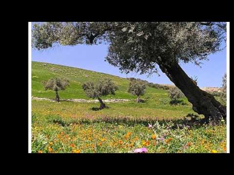 LIJEPA BOSNA I HERCEGOVINA, BEAUTIFUL BOSNIA AND HERZEGOVINA.wmv