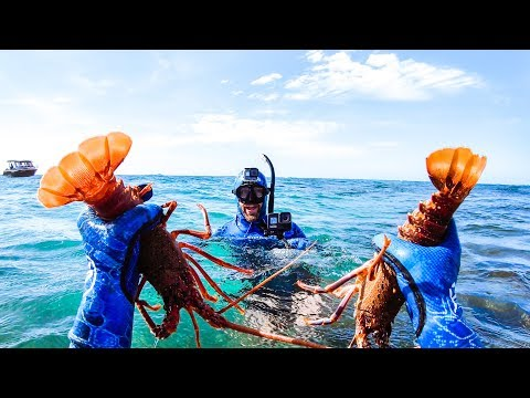CATCHING TWO CRAYFISH IN ONE DIVE WITH BARE HANDS Australia Is Burning Please Help - Ep 157