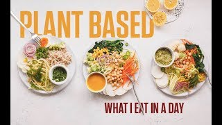 High Protein VEGAN Full Day of Eating | PLANT BASED | 120g of PROTEIN!!