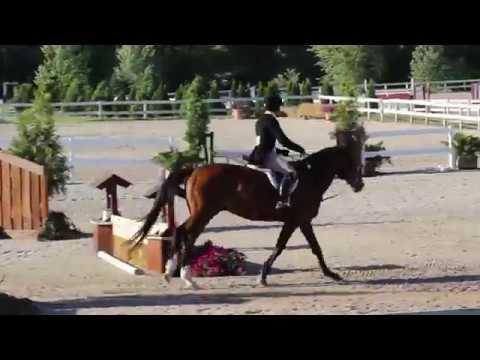 2017 Cross Winds Farm NIHJA Hunter Derby! All Rider Montage