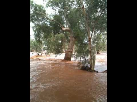 Todd River NT in flood