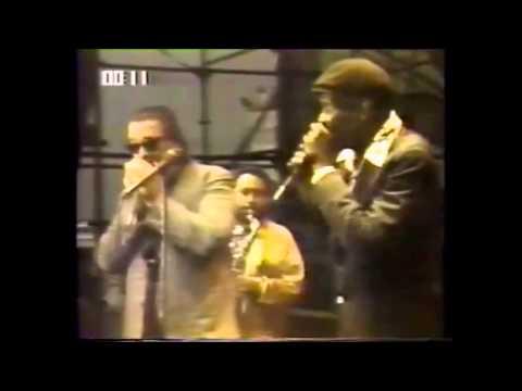 Charlie Musselwhite & Big Walter Horton. Chicago Fest 1981