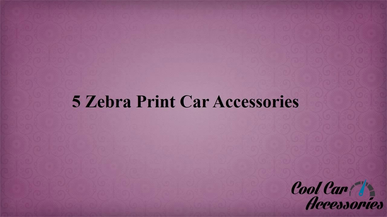 5 Zebra Print Car Accessories - YouTube