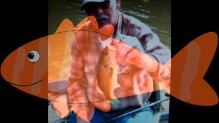 Bobby Bare  ~~The Great American Fisherman~~