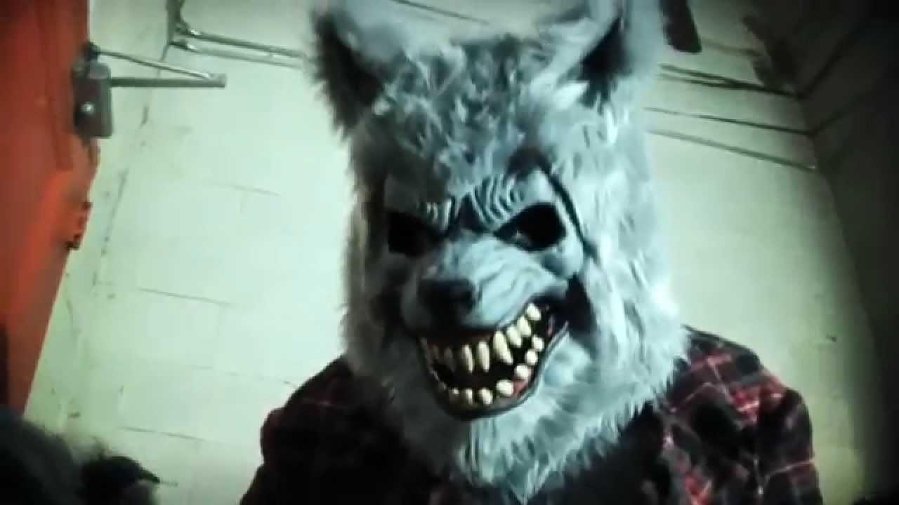 Deguisement de loup garou gris v18063 youtube - Cuisiner vesse de loup ...