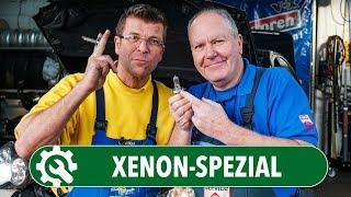 Xenon-Spezial | Warum sind Xenon-Scheinwerfer so teuer? Und sind sie besser als Halogen (H4/H7)?