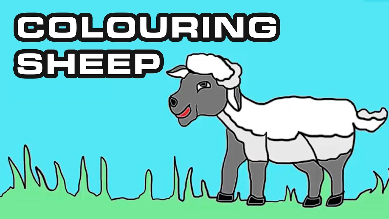 learn colors with sheep how to draw and color cartoon sheep