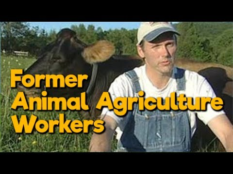 Former Animal Agriculture Workers