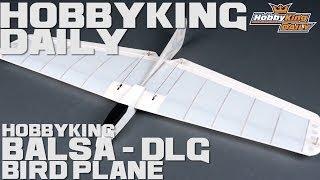 HobbyKing Daily - HK Bird Plane Balsa DLG