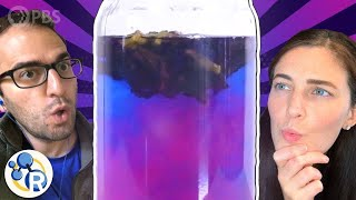 This Tea Changes Colors. Why?