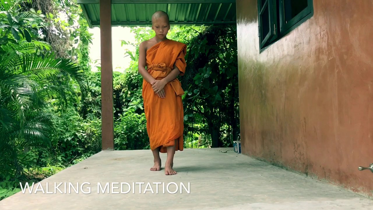 Vipassana Meditation ep1 - Walking meditation