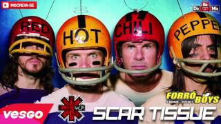Red Hot Chili Peppers Scar Tissue VERSÃO FORRÓ BOYS