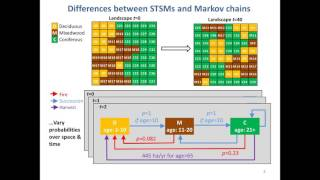 What is a state-and-transition simulation model?