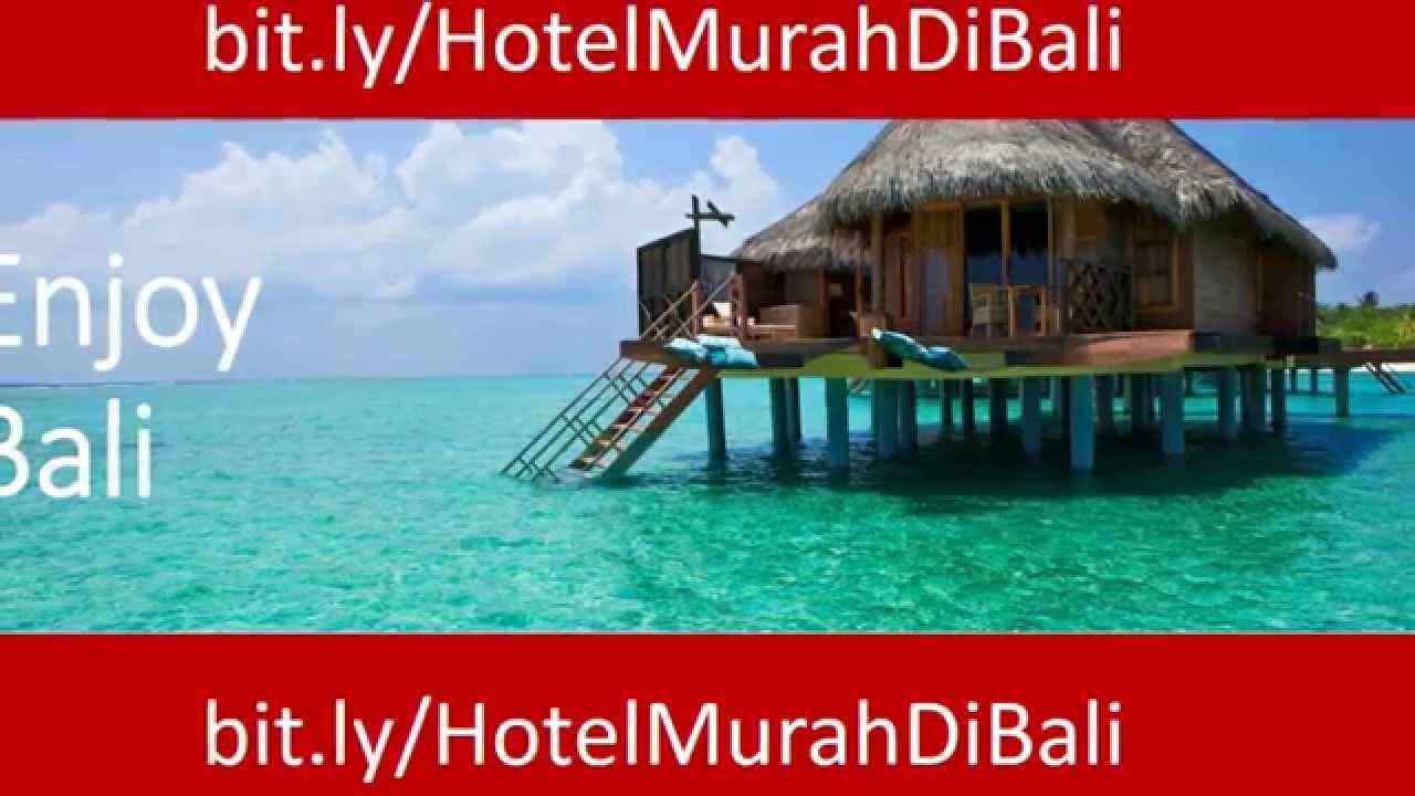 Hotel Murah Di Bali Kintamani Penginapan