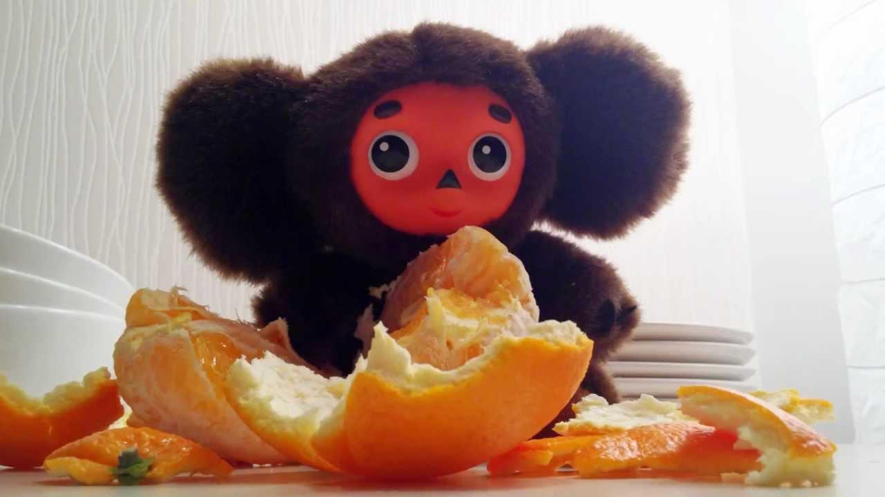 Картинка чебурашки с апельсинами