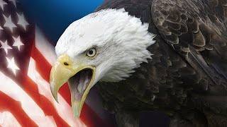 TPMR 08/12/20 | CRISIS, CHAOS & CONTROL IN AMERICA | PAUL McGUIRE