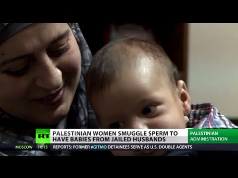 Sperm Smugglers: Palestinian women get pregnant while husbands in Israeli jail