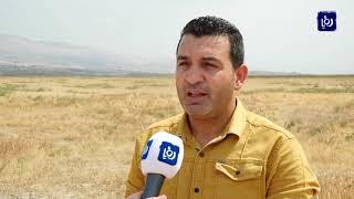 حكومة الاحتلال تعترف بمستوطنة عشوائية في غور الأردن  (15/9/2019)