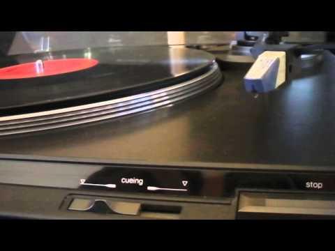Technics SL-BD22 Turntable