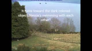 2014 Loch Ness Live Cam possible Nessie sighting