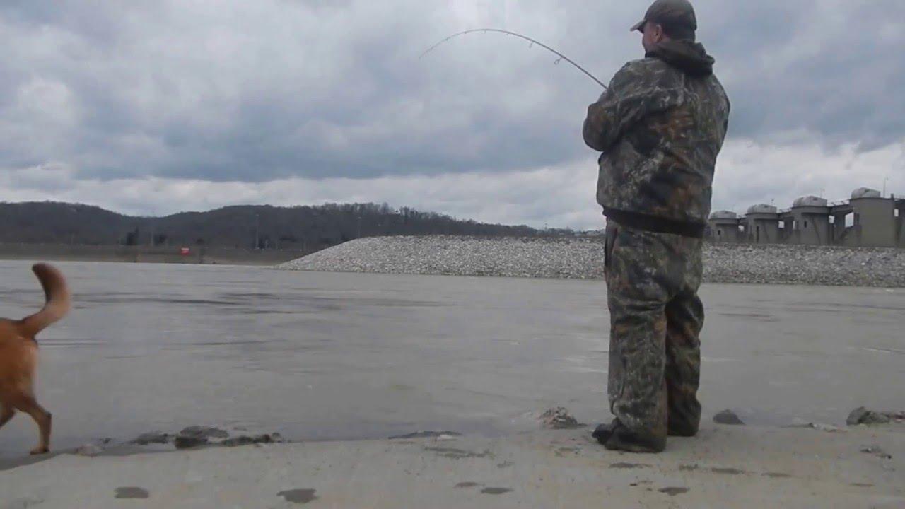 Hybrid fishing meldahl dam ohio river march 2016 youtube for Ohio river fishing report