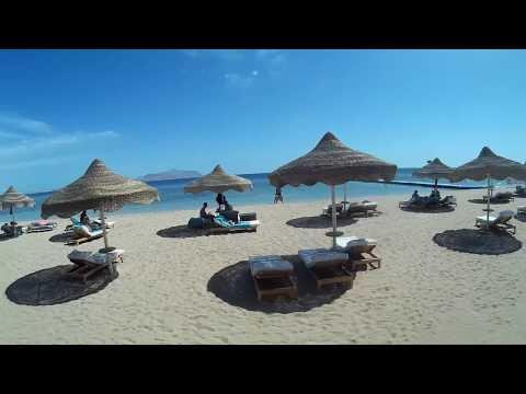 Обзор отеля BARON RESORT 5* (Шарм-Эль-Шейх) Египет
