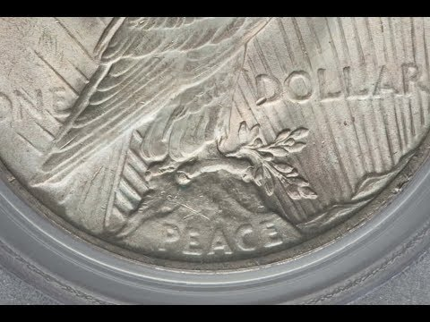 1923 Peace Dollar Vam 3 Doubled Die Reverse Variety Quick Look!!