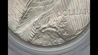 1923 Peace Dollar Vam 3 Doubled die reverse Variety quick look!!