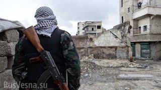 Сирия сегодня Бои под мирным небом