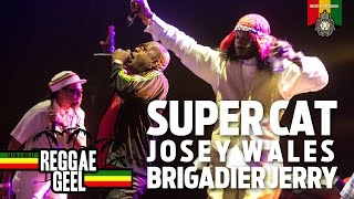 Super Cat, Josey Wales, Brigadier Jerry at Reggae Geel 2015
