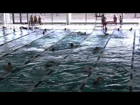 Flushing Meadows-Corona Park Aquatic Center, Queens, NY