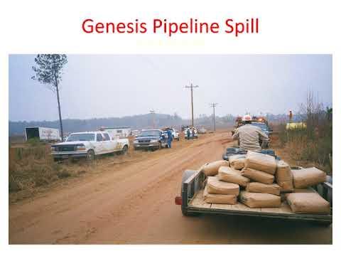 Genesis Pipeline Spill 1999