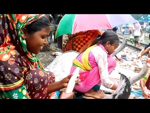 Cute Slum Girls Cutting Fish on Rail Line Fish Market