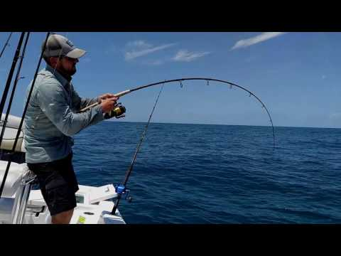 Digging Gag Grouper Offshore Tampa Bay - Quick Trip Fishing the Pipeline