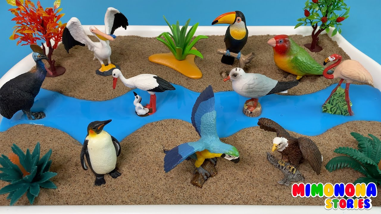 Colección de Aves para niños 🦩🦜 Arena Cinética y Slime✨ Videos educativos | Mimonona Stories