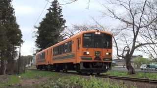 2013年 津軽鉄道 お花見?