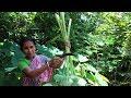 Kochu Shak Recipe- Cooking by my Mother Best Process   Taro Leaf Recipe Indian Bangali Food Mp3