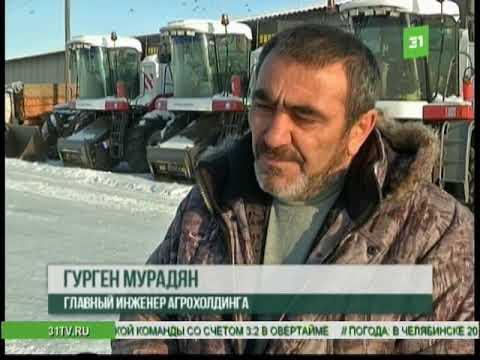 Власти Чесменского района продали поля с чужим урожаем  Фермеры просят помощи у Дубровского
