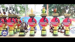 Bintang Kicau Cup,aksi Panglima Sumatra pasca mabung