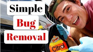Bug Removal From Car: Citrol Degreaser