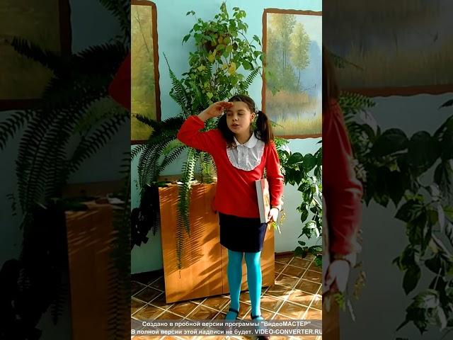 Изображение предпросмотра прочтения – ИринаРоманова читает произведение «Книги в красном переплете» М.И.Цветаевой