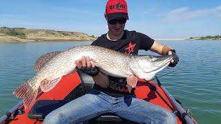 На что клюет крупная щука трофейная рыбалка в Крыму