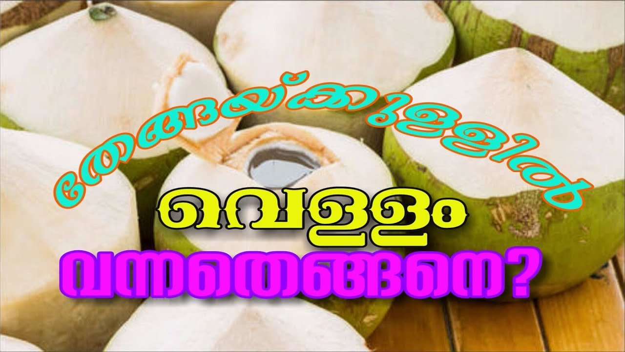 How Water inside Coconut | Malayalam | Science Facts