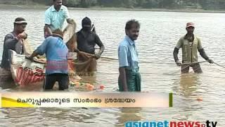 Pravasi malayalees start fish farming in Kerala പ്രവാസ ജീവിതംഉപേക്ഷിച്ച ചെറുപ്പകാര്