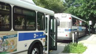 mta bus 2005 mci d4500cl qm4 3032 1998 orion v cng q64 bus 9991 at main st
