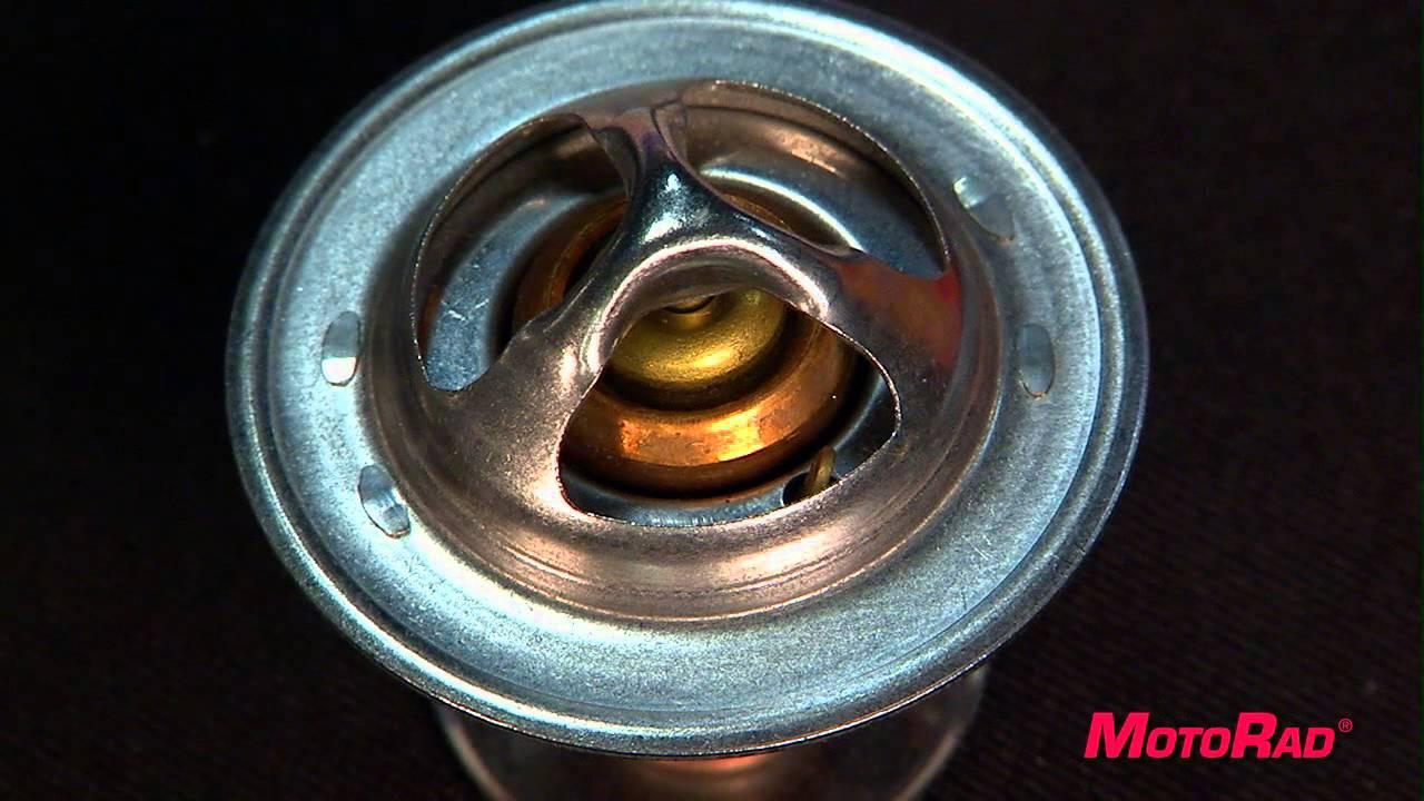 Motorad Cooling System Overview Candy Online Howtobuildhotrodscom